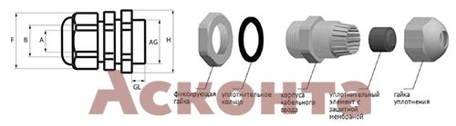 33008 PG36 Ввод кабельный (сальник) Ø24-32мм IP54 ПЕРЕДОВИК